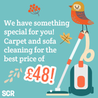 property cleaners